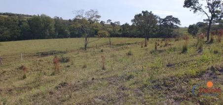 Fazenda em Ramilândia 169 Alqueires. José Pedro da Silva