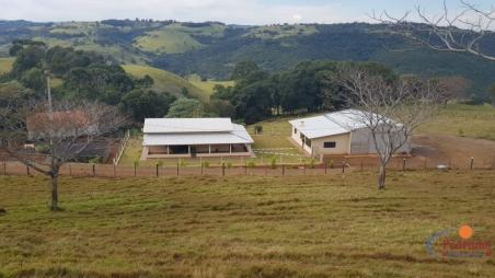51 Alqueires Fazenda Próximo a Cascavel.... José Pedro da Silva